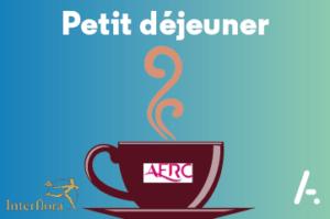 Read more about the article Comment Interflora joue avec succès la carte de la Connaissance Client